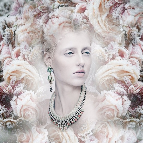 Winter beauty - in braided Monaco statement necklace and crystal skull earrings, both by Jolita Jewellery, fused with flowers